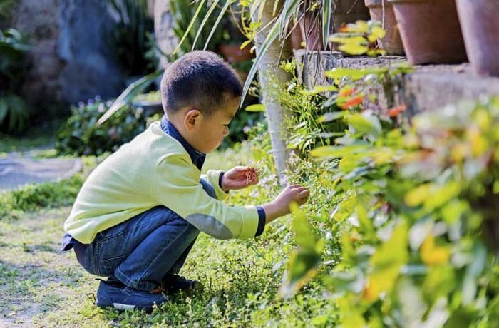 Little boy playing in the garden at a Nursery in West Finchley